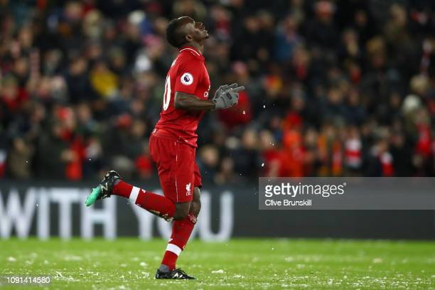 Sadio Mane of Liverpool celebrates after scoring his team's first goal during the Premier League match between Liverpool FC and Leicester City at...