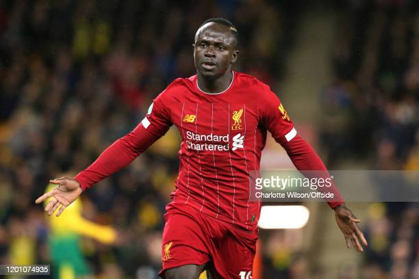 Sadio Mane of Liverpool celebrates scoring the only goal of the match during the Premier League match between Norwich City and Liverpool FC at Carrow...