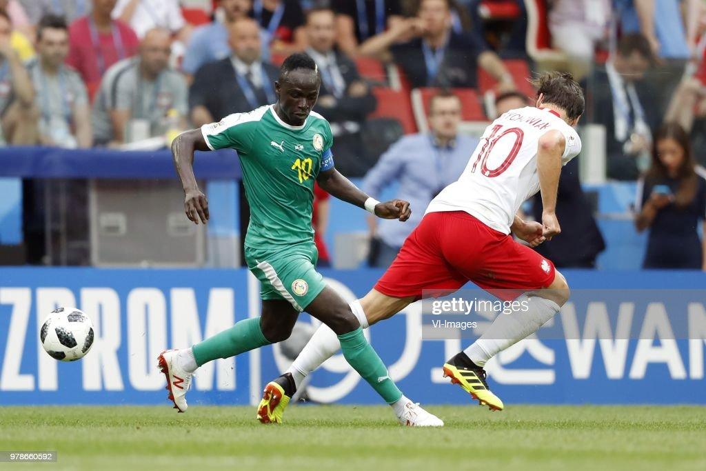 FIFA World Cup 2018 Russia'Poland v Senegal' : ニュース写真