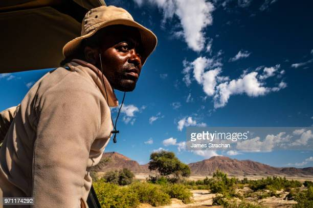 safari guide looks out with eagle eyes for elephants, hoarusib riverbed, puros, north of sesfontein, namibia (model release) - james strachan stock pictures, royalty-free photos & images