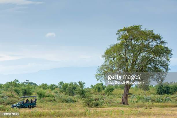 safari jeep in udawalawe national park, sri lanka - lanka stock pictures, royalty-free photos & images