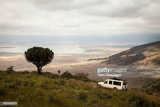 a safari truck descends into the ngorongoro crater - 荒野 ストックフォトと画像
