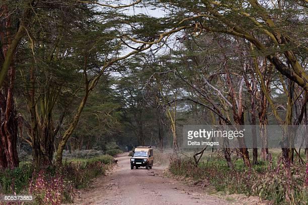 safari vehicle, lake nakuru national park, kenya - lake nakuru stock photos and pictures
