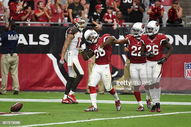 Safety DJ Swearinger of the Arizona Cardinals reacts after his interception in the fourth quarter of the NFL game against the Tampa Bay Buccaneers at...