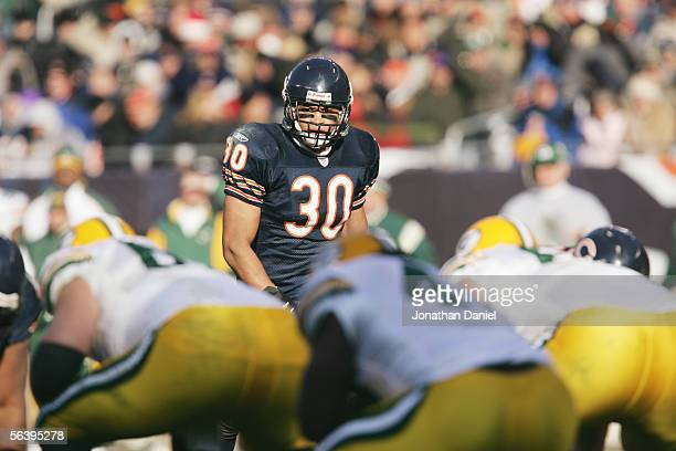 Safety Mike Brown of the Chicago Bears lines up against the Green Bay Packers at Soldier Field on December 4 2005 in Chicago Illinois The Bears...