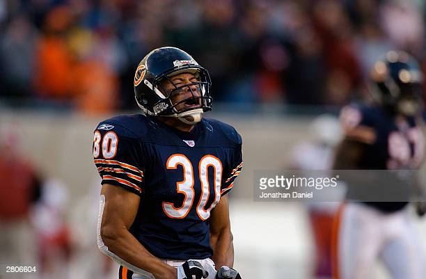 Safety Mike Brown of the Chicago Bears on the field during the game against the Arizona Cardinals on November 30 2003 at Soldier Field in Chicago...