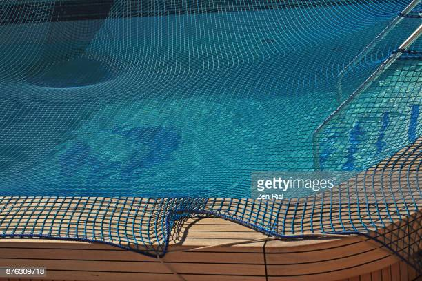 Safety net covering a swimming pool