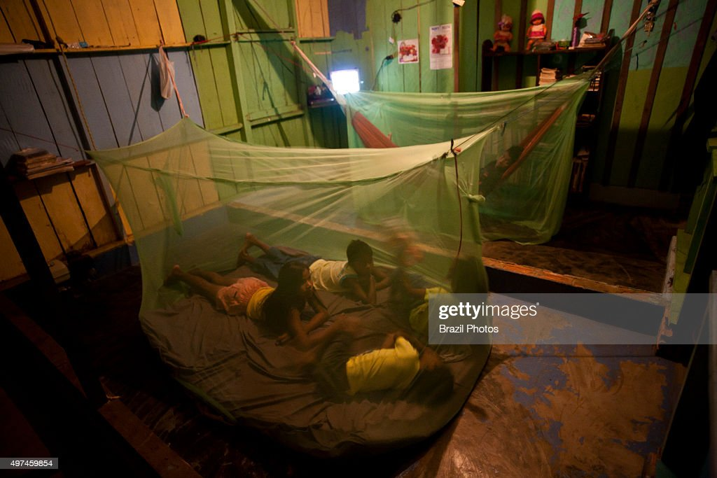 safety precaution family under mosquito net in amazon rain forest for avoiding malaria and endemic