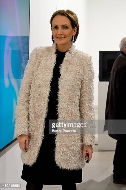 Saffron Aldridge attends the private view for Refraction The Image Of Sense curated by Peter J Amdam at Blain Southern on December 9 2014 in London...