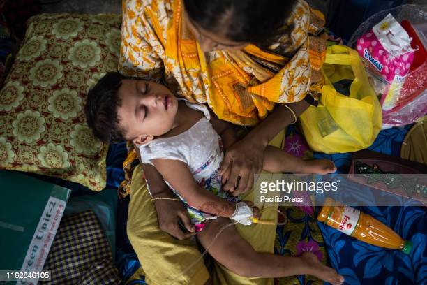 Safrin a 18 months old child suffering from dengue Official report says at least 23 people died because of dengue but unofficial and media reports...