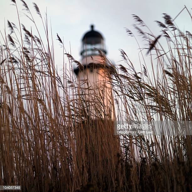 sag harbor, new york, usa - sag harbor stock pictures, royalty-free photos & images