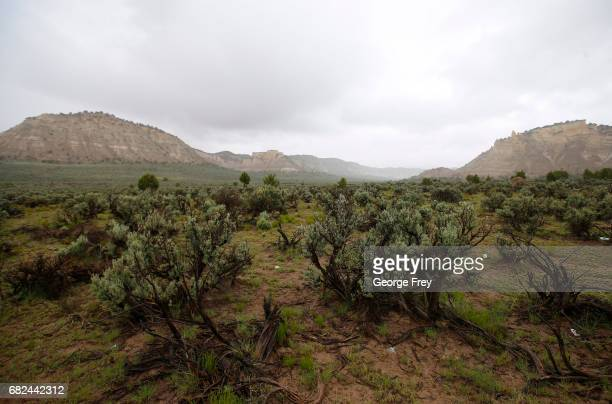 Sage brush and sandstone formations are shown here in the Grand StaircaseEscalante National Monument on May 10 2017 outside Escalante Utah The newly...