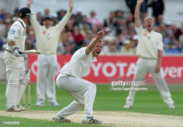 Saggers appeals for lbw, but Richardson is not out, England v New Zealand, 3rd Test , Trent Bridge, June 2004.