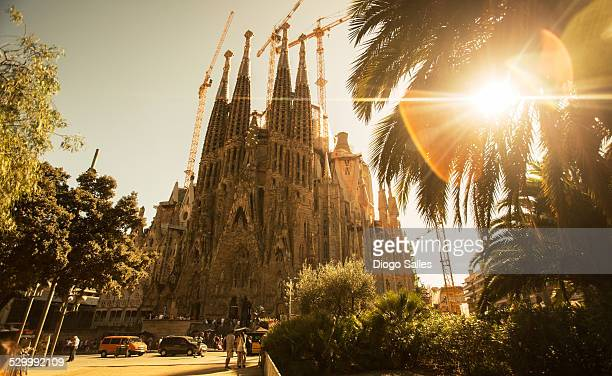 sagrada familia - basilica stock pictures, royalty-free photos & images