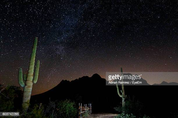 saguaro cactus against silhouette mountains at starry night - sonoran desert stock pictures, royalty-free photos & images