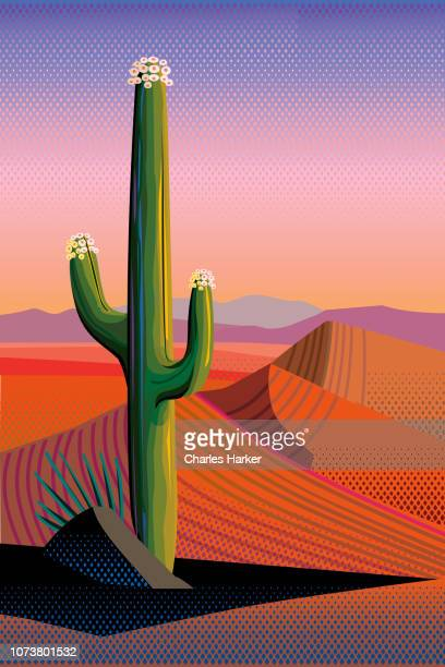 Saguaro Cactus in Bloom, Mountains in Desert Landscape Illustration