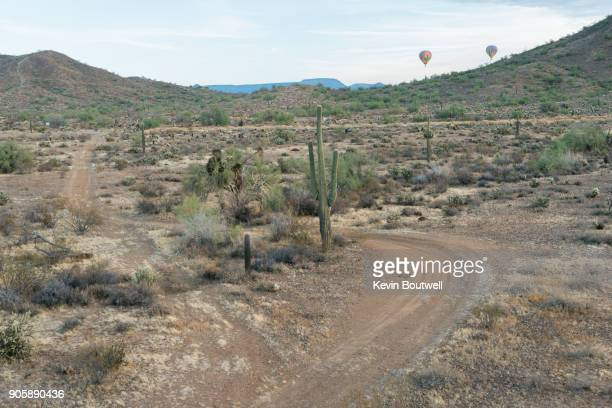 A saguaro cactus in the North Phoenix desert shot from a low flying hot air balloon with 2 rising balloons in the distance.