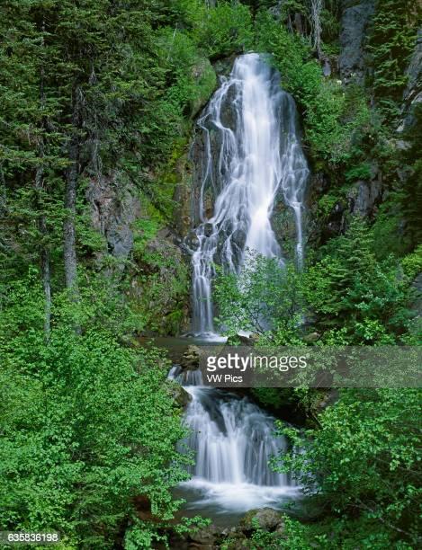 Sahale Falls Mount Hood National Forest Cascade Mountains Oregon