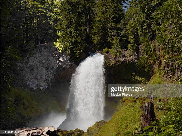 Sahalie Falls-OR (8)