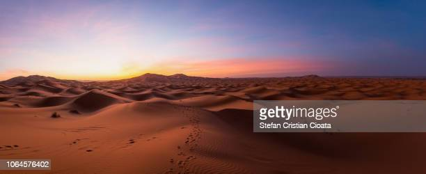 sahara desert at sunrise morocco - arid stock pictures, royalty-free photos & images