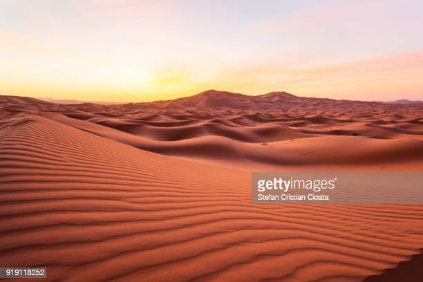 sahara desert at sunrise - merzouga stock pictures, royalty-free photos & images