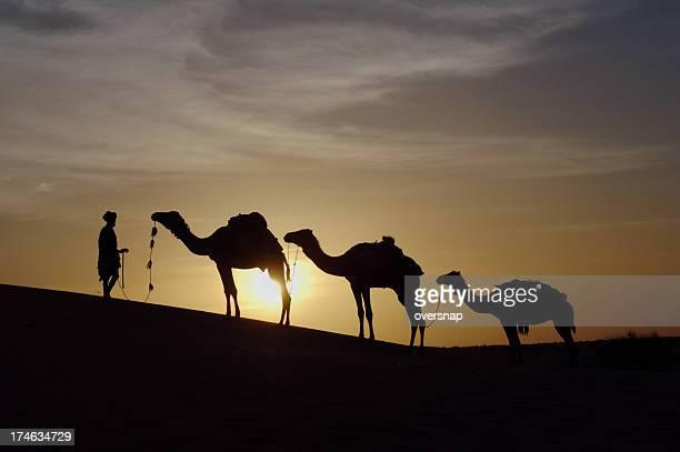 サハラ砂漠 - ニジェール ストックフォトと画像