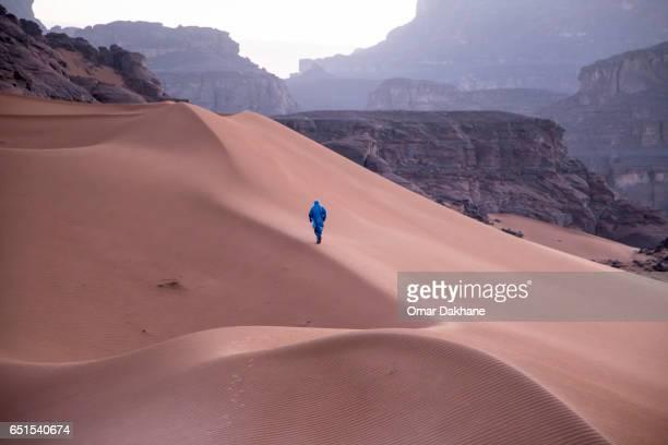 sahara desert - tuaregue imagens e fotografias de stock