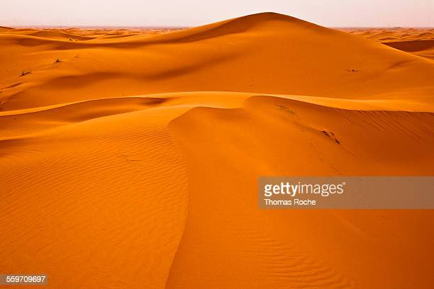 sahara dunes in the evening - merzouga stock pictures, royalty-free photos & images