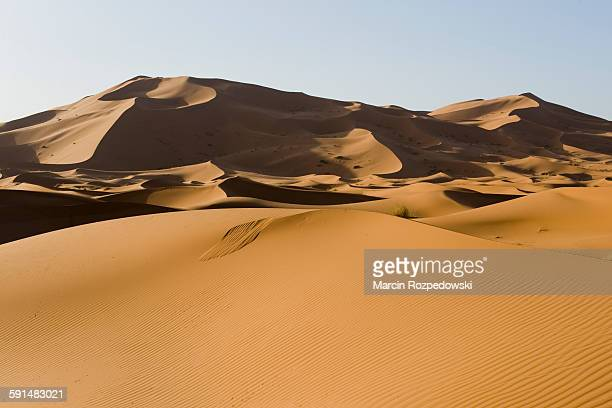sahara dunes - merzouga stock pictures, royalty-free photos & images