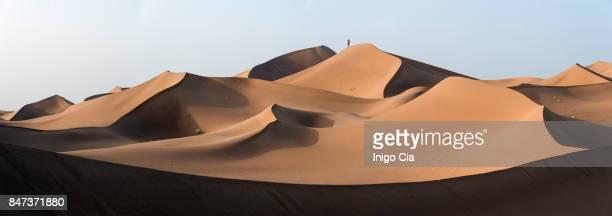Sahara`s dunes at sunset