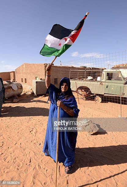 A Saharawi woman cheers up competitors as they approach the finish line of the 16th Sahara Marathon on February 23 2016 at the Saharawi refugee camp...
