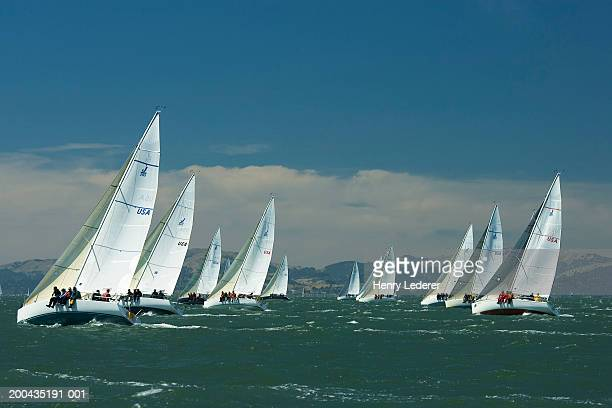 Saiboats in regatta