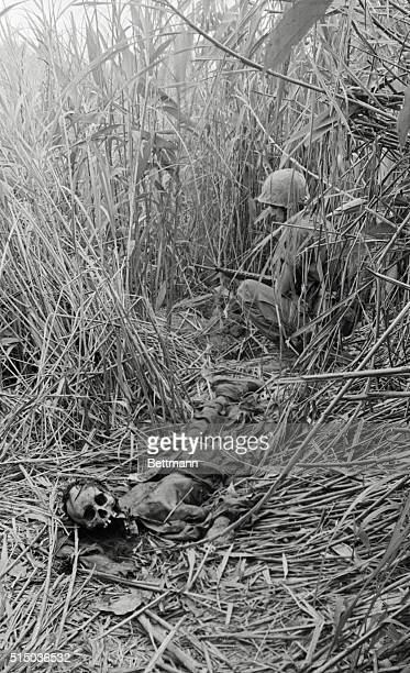Hill 110 and a Marine of 1/26th beside the decomposed body of NVA soldier hidden in tall elephant grass near Nghi Thong City 5/11
