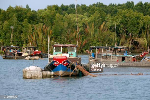 Saigon River fishing boats Vung Tau Vietnam
