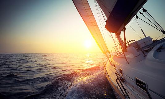 Sail boat 517484041