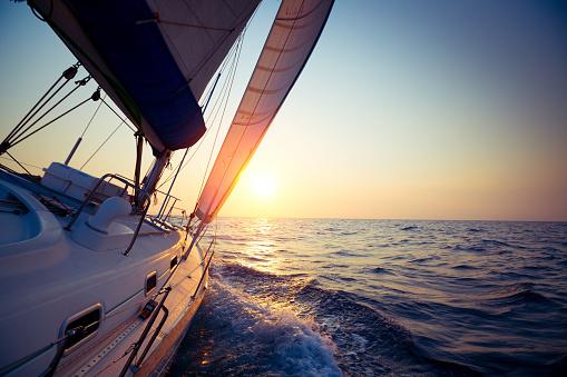 Sail boat 517484047