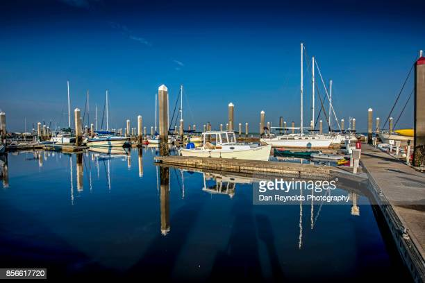 Sail Boats Moored At Harbor Against Sky and Water