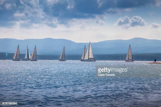 Sail Contest
