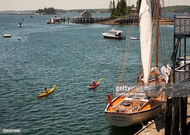 Sailboat and Kayakers
