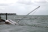 sailboat crashes shore near mallory square