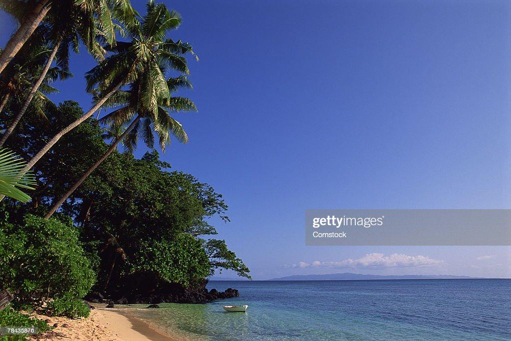 Sailboat dinghy in lagoon in Taveuni , Fiji : Stockfoto