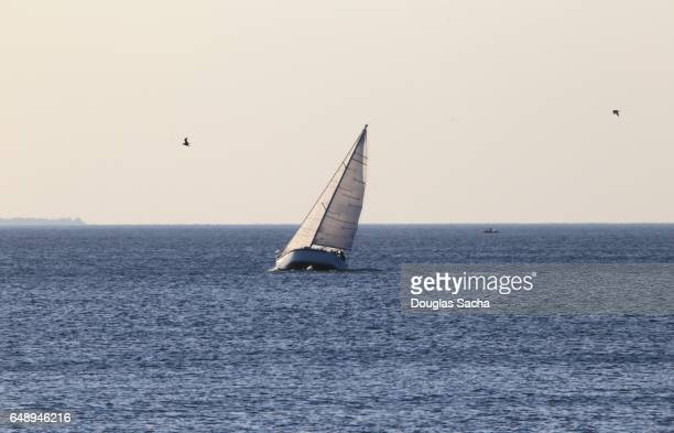 Sailboat flying full canvas on gusty wind day