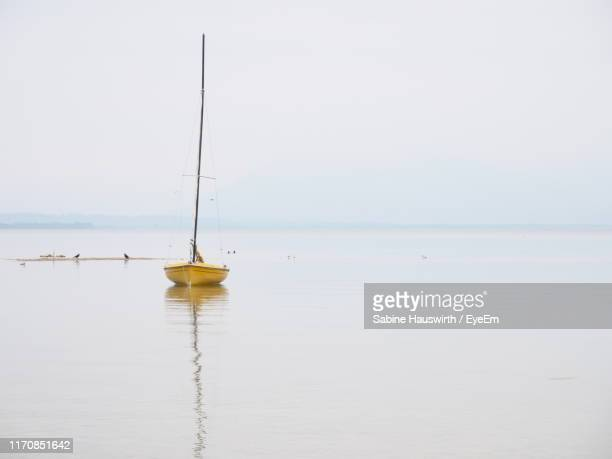 sailboat in sea against clear sky - sabine hauswirth stock pictures, royalty-free photos & images