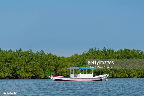 sailboat in sea against clear sky - banjul stock pictures, royalty-free photos & images