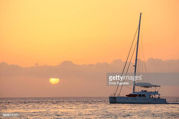 sailboat in the caribbean sea at sunset - catamaran stock photos and pictures