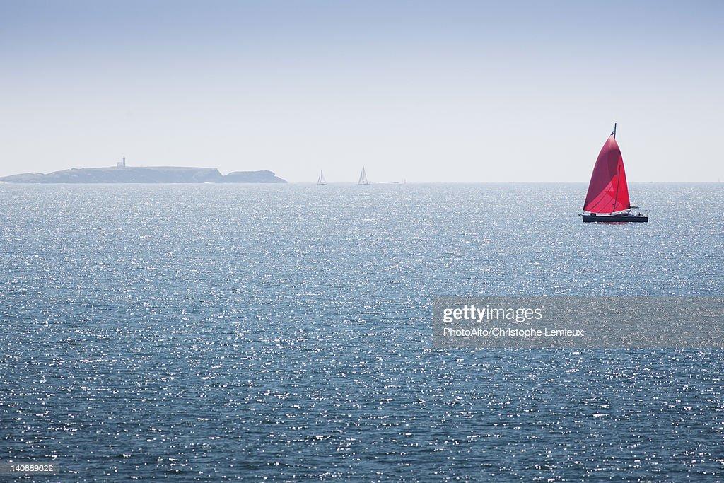 Sailboat off the coast of Belle-Ile-en-Mer, Morbihan, Brittany, France : Foto de stock