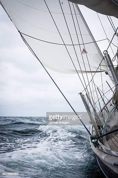Sailboat on full sea