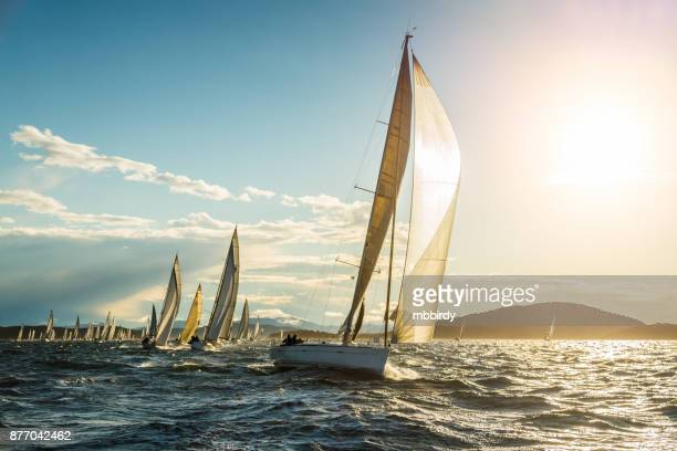sailboat on regatta on sunny autumn morning - sailing stock pictures, royalty-free photos & images