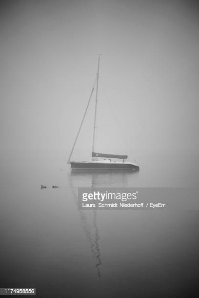 sailboat on sea against sky - laura schmidt foto e immagini stock