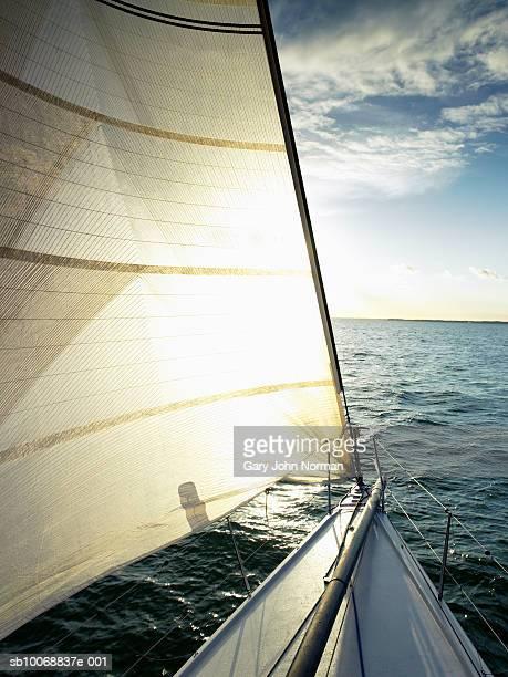 sailboat on sea, backlit - schiffsbug stock-fotos und bilder